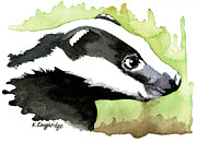 Brock Prints - Brock Badger Print by Karen  Loughridge KLArt