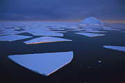 Broken Fast Ice Under Midnight Sun Print by Tui De Roy
