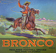 Old West Painting Prints - Bronco Oranges Print by American School