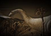 Cindy Nunn - Brontosaurus