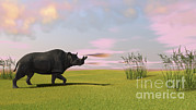 One Horned Rhino Digital Art Posters - Brontotherium Grazing In Prehistoric Poster by Kostyantyn Ivanyshen