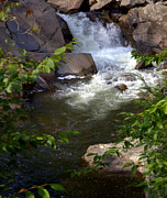 Smokey Mountain Posters - Brook of Tranquility Poster by Karen Wiles