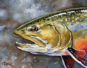 Fly Fishing Art Print Posters - Brook Trout Poster by David Rogers