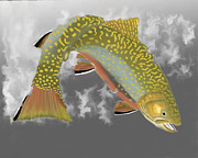 Brook Trout Image Prints - Brookie Print by Bruce J Barker