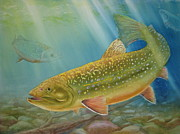 Fish Underwater Paintings - Brookie by Mohamed Hirji