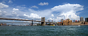 East River Prints - Brooklyn Bridge Panorama Print by Amy Cicconi