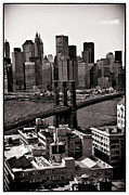 Madeline Ellis Posters - Brooklyn Bridge View in Sepia Poster by Madeline Ellis