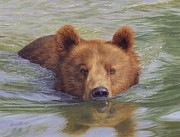 Alaska Prints Prints - Brown Bear Painting Print by David Stribbling