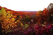 Indiana Autumn Prints - Brown County Print by Caitlyn Hymer