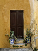 Holiday Cacti Posters - Brown door Athens Poster by Jim  Wallace