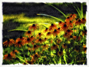 Summer Digital Art Metal Prints - Brown Eyed Girls Metal Print by Steve Harrington