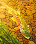 Brown Fish Print by Terry Gill