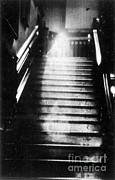 Photo Researchers - Brown Lady Of Raynham Hall Ghost 1936