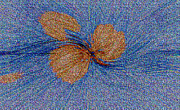 Brown Leaf Afloat Print by Bruce Iorio