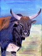 Paul Bokvel Smit - Brown Nguni 2