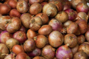 Onion Photos - Brown Onions by Rick Piper Photography