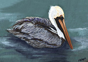 Yellow Beak Painting Metal Prints - Brown Pelican on Water Metal Print by Elaine Hodges