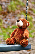 Ark Photo Prints - Brown teddy bear  Print by Tommy Hammarsten
