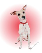 Animal Shelter Drawings - Brownie - a former shelter sweetie by Dave Anderson