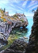 Overhang Painting Framed Prints - Bruce Peninsula Vista Framed Print by Brent Arlitt