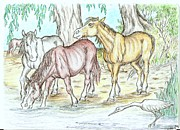 Wild Horses Drawings Originals - Brumbries  by Desley Brkic
