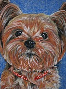Doggy Pastels Framed Prints - Bruno Framed Print by Linda Eversole