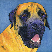 Mastiff Dog Paintings - Brutus #2 by Ann Ranlett