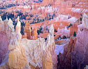 Inspiration Point Framed Prints - Bryce at Dusk Framed Print by Ray Mathis