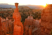 Thor Prints - Bryce Canyon Print by Christian Heeb