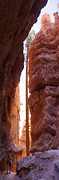 Utah Framed Prints - Bryce Canyon from the Bottom Framed Print by Mike McGlothlen