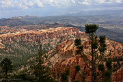 Beth Gardner - Bryce Canyon I