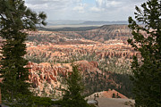 Beth Gardner - Bryce Canyon II