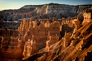 Jeff Burton Metal Prints - Bryce Canyon II Metal Print by Jeff Burton