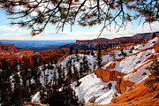 Marti Green - Bryce Canyon