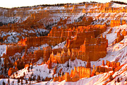 Colorado Prints Framed Prints - Bryce Canyon Framed Print by Monique Wegmueller