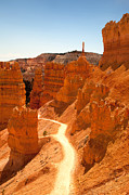 Geology Posters - Bryce Canyon trail Poster by Jane Rix