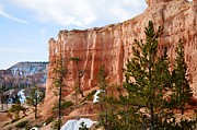 Bryce Canyon Acrylic Prints - Bryce Curved Formation Wall Acrylic Print by Rincon Road