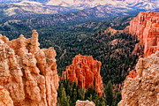 Tom Prendergast - Bryce National Park