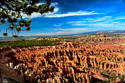 Sandstone Canyons Photos - Bryce by Robert Bales