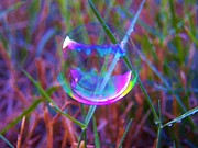 Bubble Illusions 3 Print by Judy Via-Wolff
