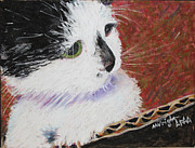 Black And White Cats Pastels - Bubbles in a Box by Marsha Wright