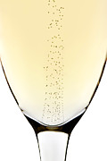 Bubbles In Champagne Print by Johan Swanepoel