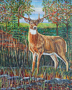 Sandra Wilson - Buck in Fall