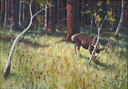 Wildlife Mixed Media Originals - Buck Rub by Rob Corsetti