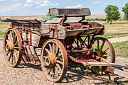 Sue Smith - Buckboard Wagon