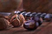 Bursting Prints - Buckeye Nut Still Life Print by Tom Mc Nemar