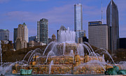Chicago Fountain Prints - Buckingham Fountain Print by Bill Lambright