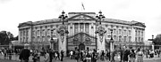 Buckingham Palace Photos - Buckingham Palace by Svetlana Sewell