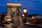 Eastern Europe Digital Art - Budapest Bridge with Lion by Matthew Bamberg