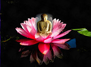 Joseph Frank Baraba Digital Art Prints - Buddha And Lotus Tranquility Print by Joseph Frank Baraba
